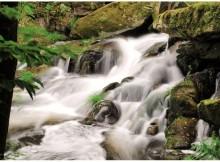 O Proxecto Umia orientado a eliminar a proliferación de cianobacterias no rio, busca financiamento do programa Life