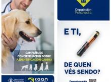 Os Bolachas Campaña Deputación abandono animal