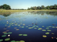 zonas de especial conservación da Rede Natura 2000