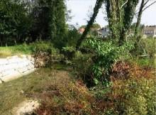 Medio-Ambiente-retira-troncos-árbores-caídas-río-Gafos-evitar-episodios-asolagamentos-Pontevedra