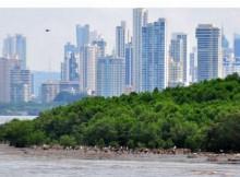 saneamento-baía-Panamá-vai-remolque-detrás-desenvolvemento-urbanístico