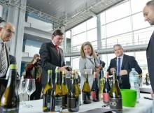 Case-corenta-adegas-DO-Rías-Baixas-mostran-seus-mellores-produtos-unha-quincena-importadoreseuropeos