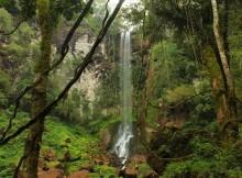 parque-provincial-salto-encantado-a-xoia-escondida-da-provincia-misiones-en-arxentina
