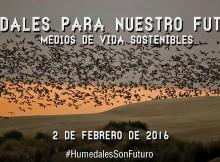 o-40-dos-humidais-mais-importantes-de-espana-presentan-un-estado-de-conservacion-preocupante