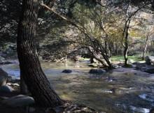 o-goberno-aproba-o-segundo-ciclo-de-planificacion-hidrologica