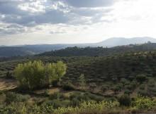 a-unesco-aproba-duas-novas-reservas-da-biosfera-en-espana