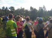 oitenta-persoas-participaron-na-primeira-depo-andaina-que-percorreu-a-ruta-dos-petroglifos-de-campo-lameiro