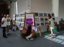 a-exposicion-tomino-en-fotos-ilustra-as-festas-patronais-do-alivio
