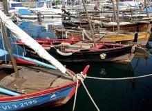 o-ficbueu-ofrece-rutas-de-sendeirismo-de-navegacion-e-gastronomica