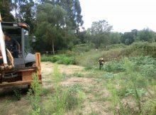 gondomar-fara-unha-horta-ecoloxica-e-un-xardin-de-plantas-aromaticas-no-lugar-que-ia-o-tanque-de-tormentas