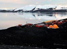 cientificos-de-vigo-e-santiago-regresaran-a-antartida-para-estudar-os-efectos-do-cambio-climatico-sobre-as-macroalgas