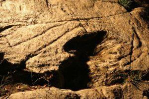 comezan-en-oia-os-labores-de-limpeza-no-entorno-do-petroglifo-de-auga-dos-cebros