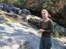 os-traballos-de-limpeza-de-costa-dos-castros-permiten-descubrir-novos-petroglifos-no-viveiro-oia