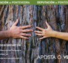 deputacion-pontevedra-aposta-polo-verde-e-impulsa-10-charlas-dirixidas-ao-alumnado-da-e-fp-promocionar-sector-agroforestal