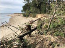 estado-deterioro-no-litoral-do-esteiro-do-mino-chega-aos-parlamentos-galego-e-espanol