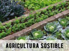 curso de hortofruticultura no Rosal