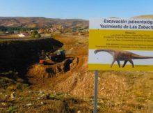 Os segredos das plantas que conviviron co primeiro dinosauro descrito en España saen á luz na Universidade