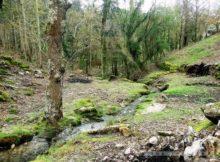 A Serra do Galiñeiro, o incalculable valor dunha paisaxe