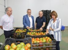 a-xunta-destinara-catro-millons-de-euros-co-galo-de-mellorar-os-resultados-economicos-do-sector-horticola