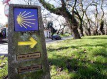 Galicia estreita lazos con Francia para reforzar o papel histórico deste país na peregrinación a Santiago de Compostela