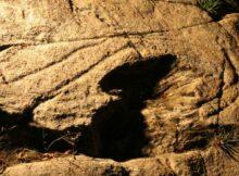 Un caderno divulgativo destaca a singularidade e valor patrimonial dos petróglifos do río Vilar (Pedornes-Oia)