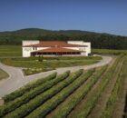 Terras Gauda suscribe un acuerdo de distribución con un importador de vinos Premium en EEUU