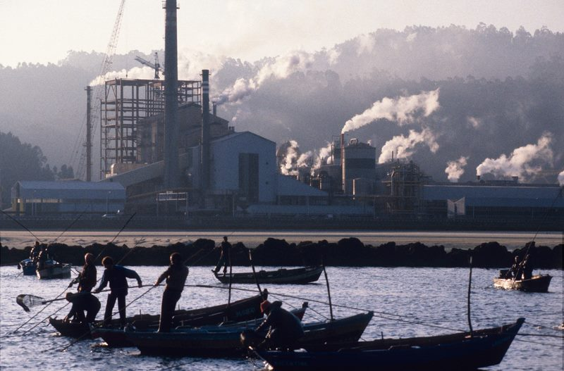 Greenpeace e APDR reiteran a necesidade de que se declare definitivamente nula a prórroga de ENCE-Pontevedra