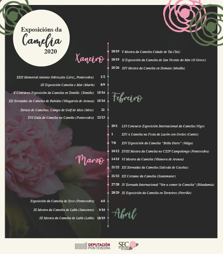 Cartel CAMELIA 2020