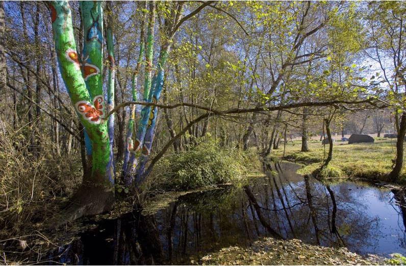 Medio Ambiente reactiva as axudas para actuacións municipais nas Reservas da Biosfera e nos Parques Naturais de Galicia