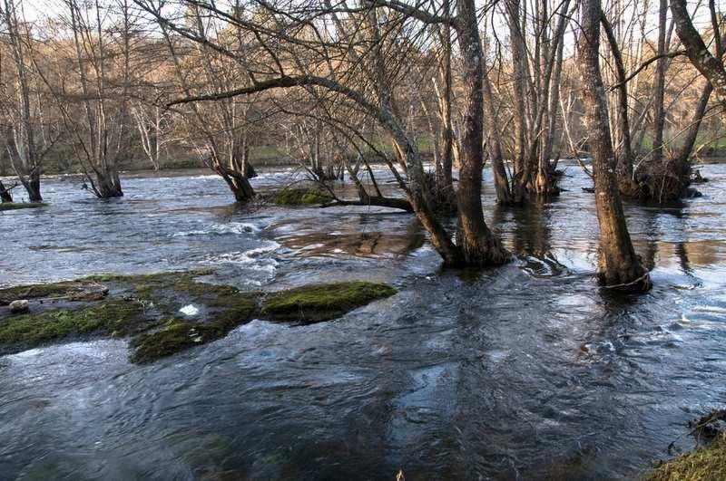 A Xunta quere reducir os efectos negativos das inundacións cun seguimento da rede fluvial en tempo real