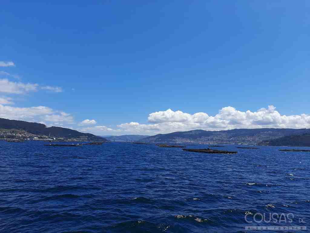 INTECMAR recibe un premio internacional polo seu labor no apoio á conservación e valorización do mar