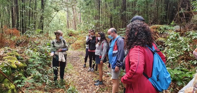 Un total de 450 persoas participaron no programa Bosques Terapéuticos da Deputación de Pontevedra