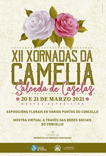 Salceda celebra as XII Xornadas da Camelia con exposiciones florais e unha mostra virtual
