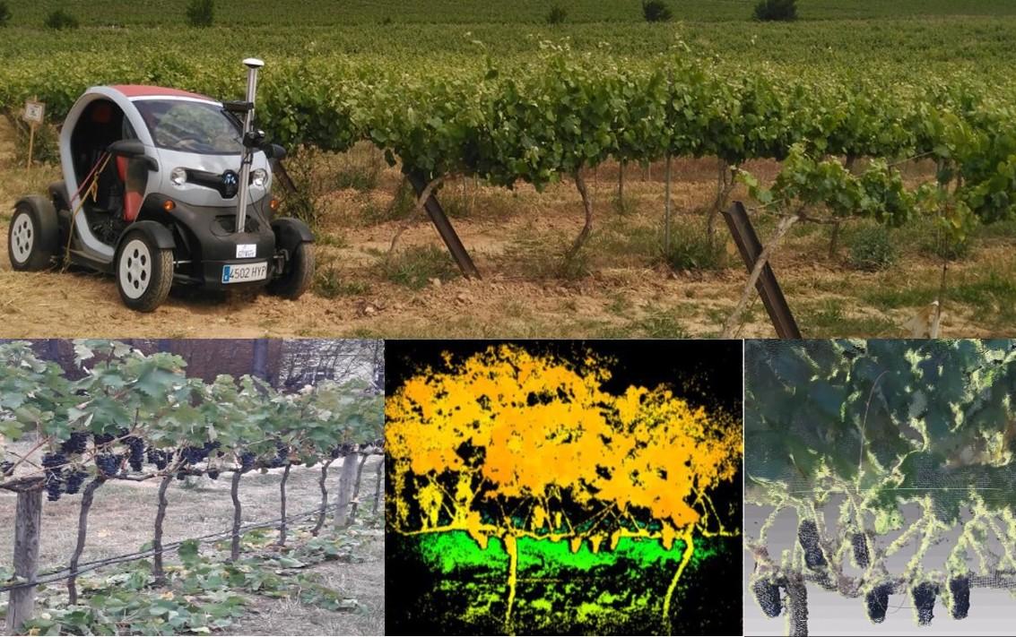 Terras Gauda mellorará a eficiencia e sustentabilidade do viñedo participando nun proxecto europeo de robótica