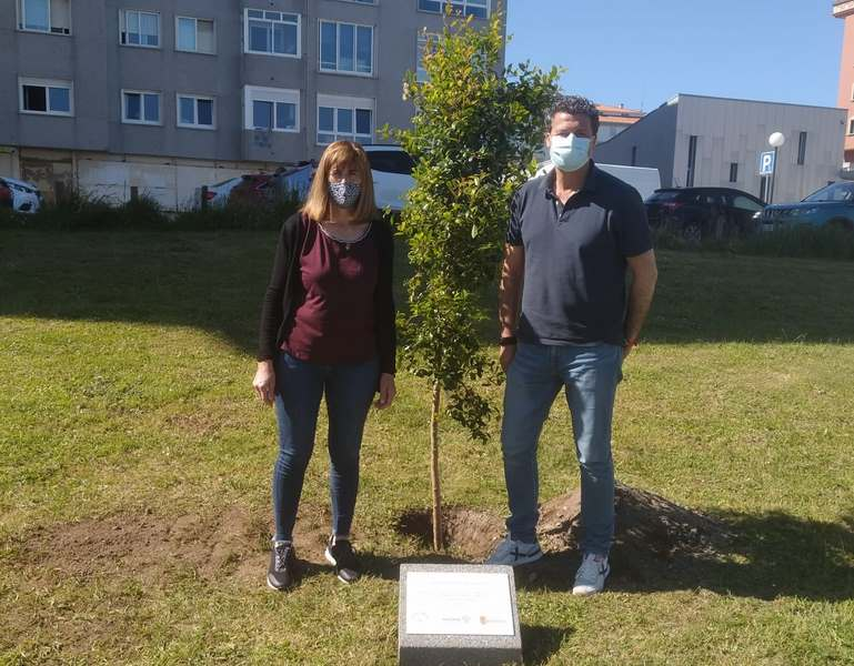Baiona participa na iniciativa 'Unha Árbore Por Europa' para concienciar sobre o desenvolvemento sostible