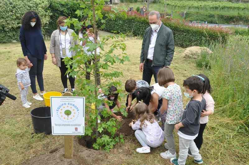 Os escolares de Soutomaior celebran o Día Mundial do Medio Ambiente plantando árbores en colexios e parques