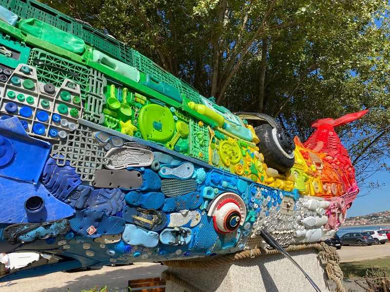 'Balmi' o cachalote de Vive Nigrán xa loce en Praia América